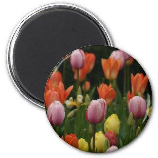 Un campo de peonies, de cyclamens y de tulipanes imán redondo 5 cm