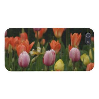 Un campo de peonies, de cyclamens y de tulipanes iPhone 5 fundas