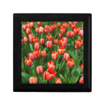 Un campo de tulipanes rojos caja de joyas