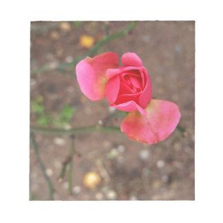 Un capullo de rosa de noviembre bloc de notas