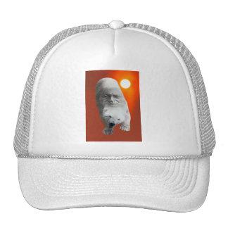Un carácter sagrado y un apuro de los osos polares gorras de camionero