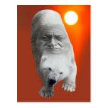 Un carácter sagrado y un apuro de los osos polares tarjeta postal