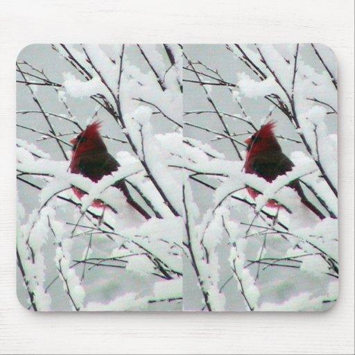 Un cardenal rojo hermoso en los arbustos cubrió in mousepads