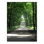 Un carril holandés en Forrest en postal de la foto