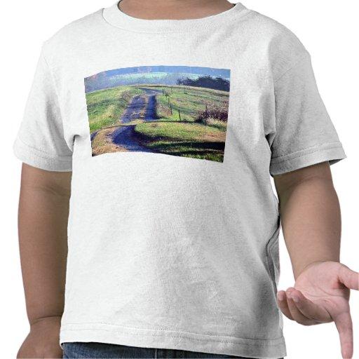 Un carril reservado del país camisetas