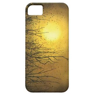 Un caso vibrante del iphone 5 del oro iPhone 5 carcasa