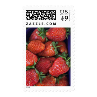 un cestito de las fresas frescas maduras para la sello