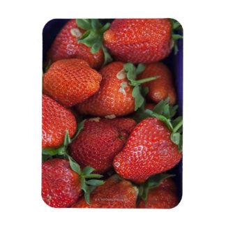 un cestito de las fresas frescas maduras para la v imán