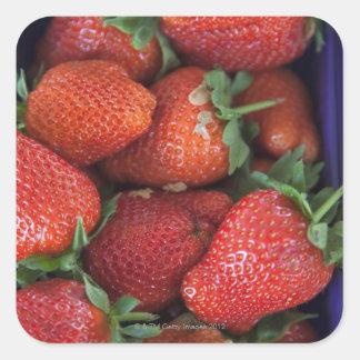 un cestito de las fresas frescas maduras para la v calcomanias cuadradas