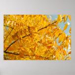 Un chapoteo del poster del otoño