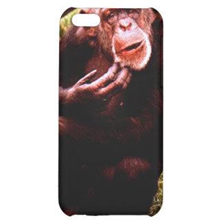 Un chimp para arriba de mirada ensuciado