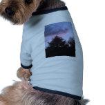 Un cielo hermoso ropa para mascota