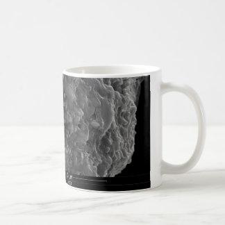 Un cierre encima de la vista de una sección tazas de café
