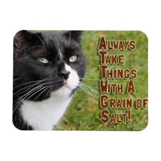 Un cierto consejo salado iman flexible