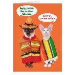 Un Cinco de Mayo de los gatos irritables Tarjeta De Felicitación