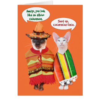 Un Cinco de Mayo de los gatos irritables Tarjetas