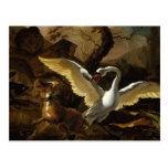 Un cisne enfurecido por Hondius Tarjeta Postal