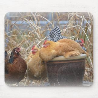 Un cojín de ratón del pollo tapetes de ratón