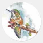 Un colibrí, dibujo de lápiz de la acuarela etiquetas redondas