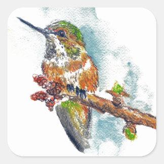 Un colibrí, dibujo de lápiz de la acuarela pegatina cuadrada