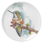 Un colibrí, dibujo de lápiz de la acuarela platos