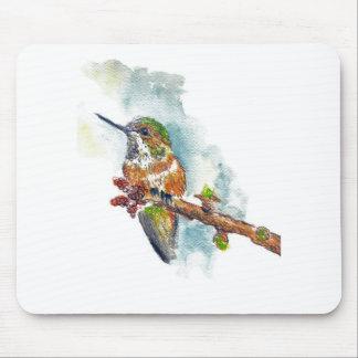 Un colibrí, dibujo de lápiz de la acuarela alfombrilla de ratón