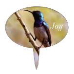Un colibrí púrpura palillos de tarta