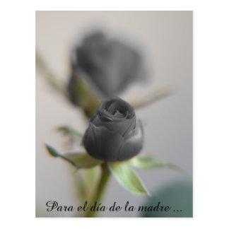 Un color de rosa negro para la madre… postales
