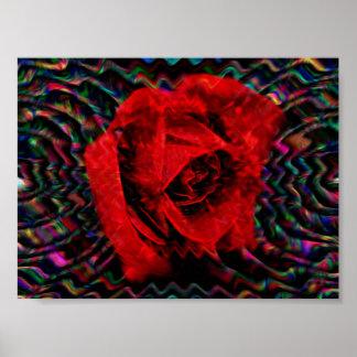 Un color de rosa para su amado póster