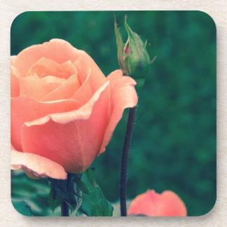 Un color de rosa por cualquier otro nombre posavasos de bebida