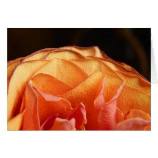 Un color de rosa tarjeta pequeña