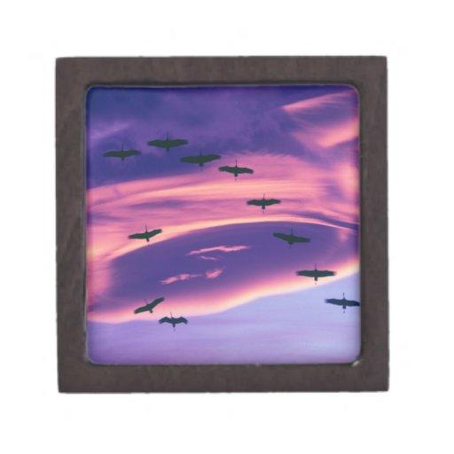 Un compuesto de la foto de Sandhill cranes en vuel Cajas De Recuerdo De Calidad