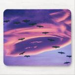 Un compuesto de la foto de Sandhill cranes en vuel Alfombrillas De Ratones