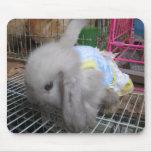 Un conejo en un vestido alfombrillas de ratones