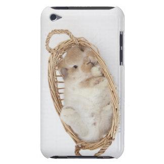 Un conejo está en una cesta. Holanda Lop. iPod Case-Mate Coberturas