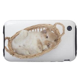 Un conejo está en una cesta. Holanda Lop. iPhone 3 Tough Cárcasa