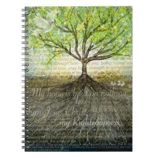 Un cuaderno más profundo de las raíces
