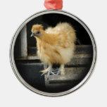 un cuadro pequeno hermoso del pollo de Silkie Ornamento De Navidad