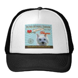 Un Dandie cariñoso Dinmont Terrier Gorro De Camionero