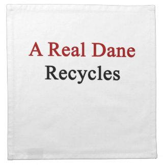 Un danés real recicla servilletas de papel