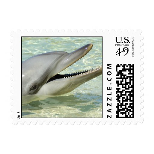 Un delfín sonriente sellos