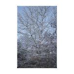 Un día de invierno lona estirada galerías