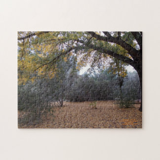 Un día de la caída en el arboreto puzzle