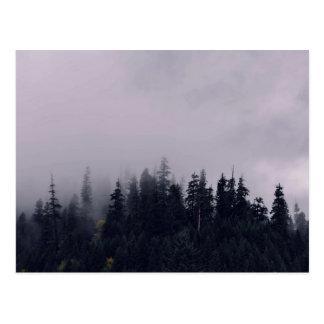 Un día de niebla en el bosque tarjetas postales