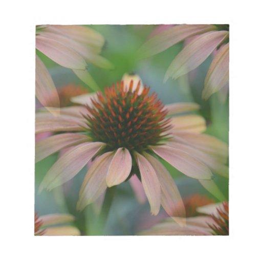 Un día de verano - Echinacea Libretas Para Notas