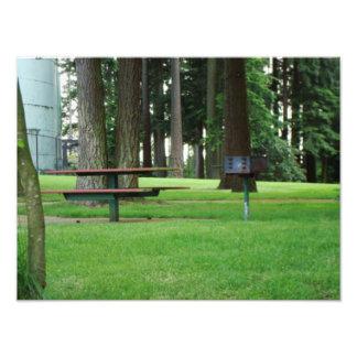 Un día en la foto del parque