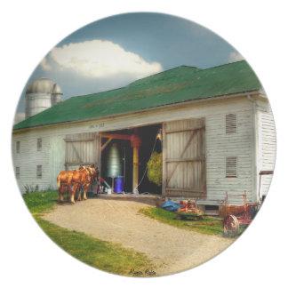 Un día en la granja platos para fiestas