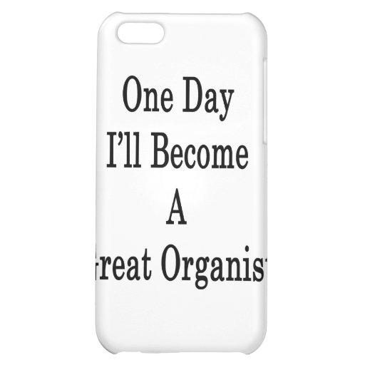 Un día haré gran organista