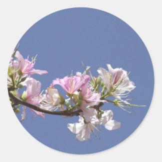 Un día perfecto - el rosa blanco florece al pegatina redonda