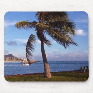 ¡Un día perfecto en paraíso! Tapetes De Raton